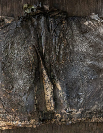 Créations Dragonfly | Atelier du Verre | photographie Arthur Pequin